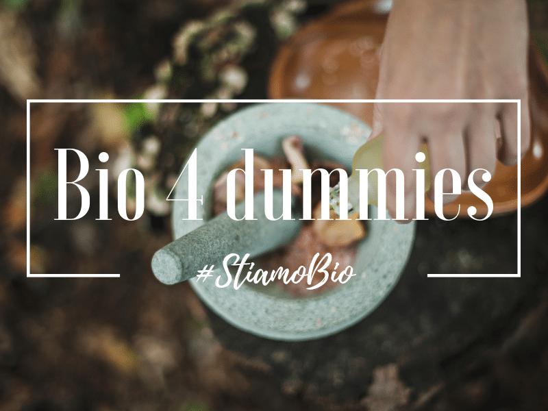 bio for dummies